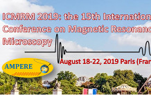 Success for the 2019 ICMRM conference co-organized by Luisa Ciobanu