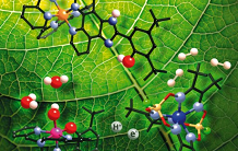 Artificial photosynthesis: the second electron finally accessible