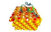 Importance of chemical modifications of proteins for their interactions with nanoparticles