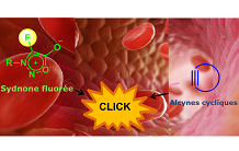See a tumor in PET imaging by « click-chemistry » in vivo
