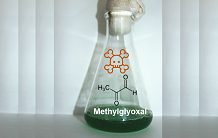 Methylglyoxal detoxification revisited in cyanobacteria