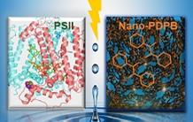 Artificial photosynthesis, a first: a nano-polymer capable of mimicking photosystem II